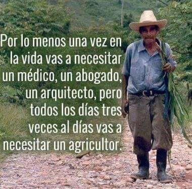 Por lo menos una vez en la vida vas a necesitar un médico, un abogado, un arquitecto, pero todos los días tres veces al día vas a necesitar un agricultor.