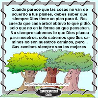 sueños,tesoros,árbol,Dios,embarcación,poderosa