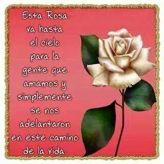 Esta rosa va hasta el cielo para lagente que amamos y simplemente se nos adelantaron en este caminode la vida.