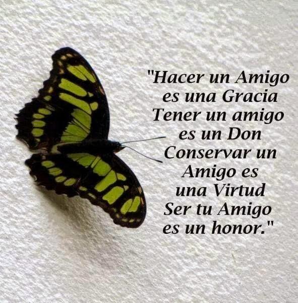"""""""Hacer un amigo es una gracia tener un amigo es un don conservar un amigo es una virtud ser tu amigo es un honor."""""""