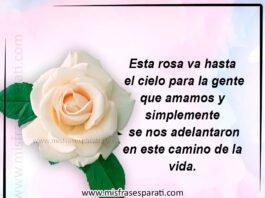 Esta Rosa va hasta el cielo para la gente que amamos y simplemente se nos adelantaron en este camino de la vida.