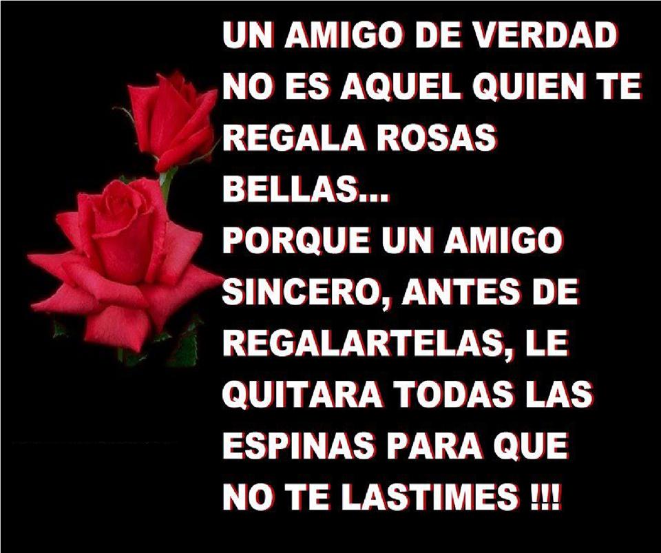 frases de amigo, verdad,regala,rosas,bellas,sincero,espinas,lastimes.