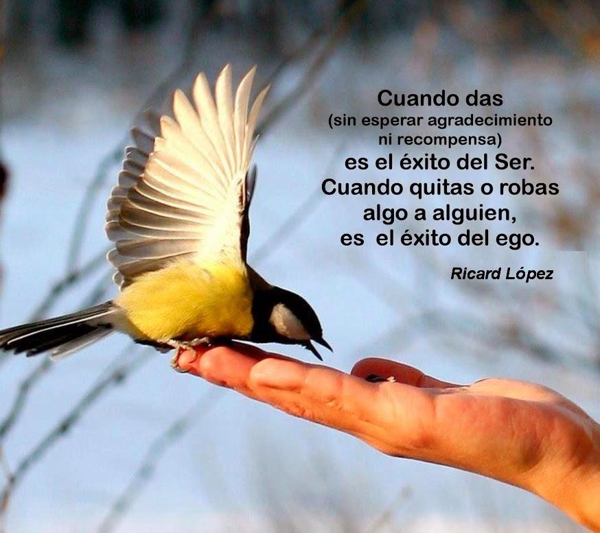 Cuando das, sin esperar agradecimiento ni recompensa, es el éxito del Ser. Cuando quitas o robas algo a alguien, es el éxito del ego.