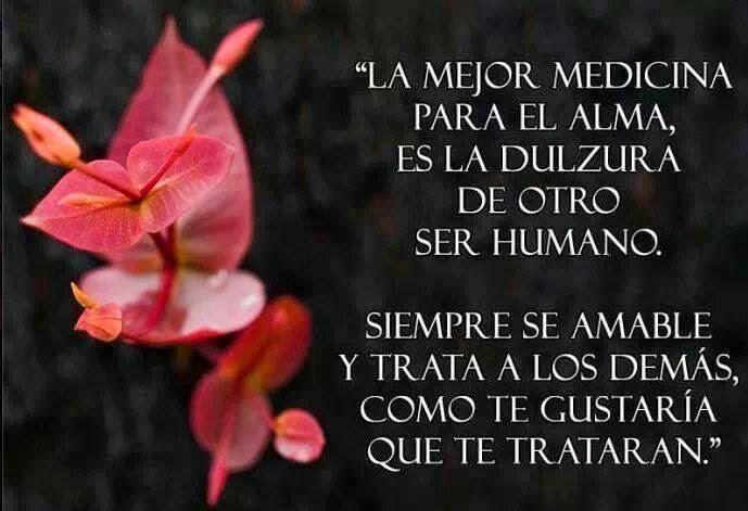 La mejor medicina para el alma, es la dulzura de otro ser humano, siempre se amable y trata a los demás, como te gustaría que te trataran.