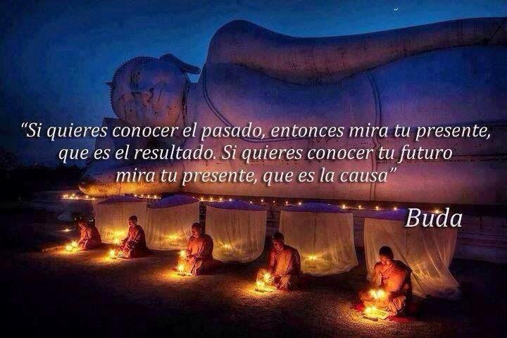 """""""Si quieres conocer el pasado, entonces mira tu presente, que es el resultado.  Si quieres conocer tu futuro mira tu presente, que es la causa""""  Buda"""