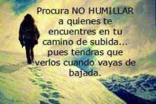 Procura no humillar a quienes te encuentres  en tu camino de subida, pues tendrás que  verlos cuando vayas de bajada.
