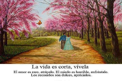 Frases de vida, corta, vívela, amor, miedo, recuerdos.