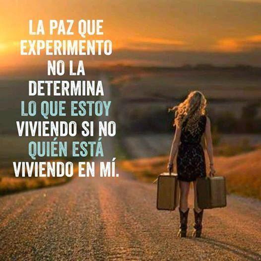 Frases de reflexión, paz, experimento, determina, viviendo.