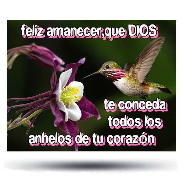 Feliz amanecer, que Dios te conceda todos los anhelos de tu corazón.