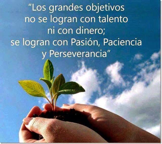 Frases de reflexión, grandes, objetivos, talento, pasión, paciencia, perseverancia.