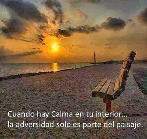 Cuando hay calma en tu interior, la adversidad solo es parte del paisaje.