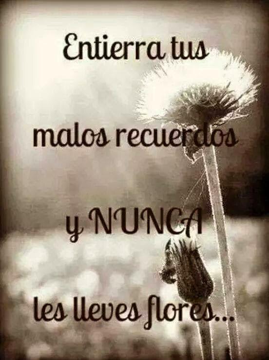 Frases de superación, entierra, malos, recuerdos, nunca, lleves, flores.