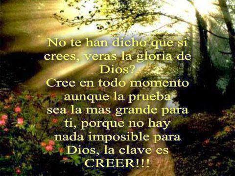 No te han dicho que si crees, veras la gloria de Dios? Cree en todo momento aunque la prueba  sea la mas grande para ti, porque no hay nada imposible para Dios,  la cave es CREER!!!