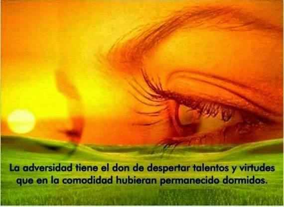 La Adversidad Tiene El Don De Despertar Talentos Y Virtudes