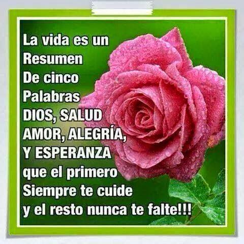La vida es un resumen de cinco palabras Dios, Salud, Amor, Alegría y Esperanza que el primero siempre te cuide y el resto nunca te falte!!!