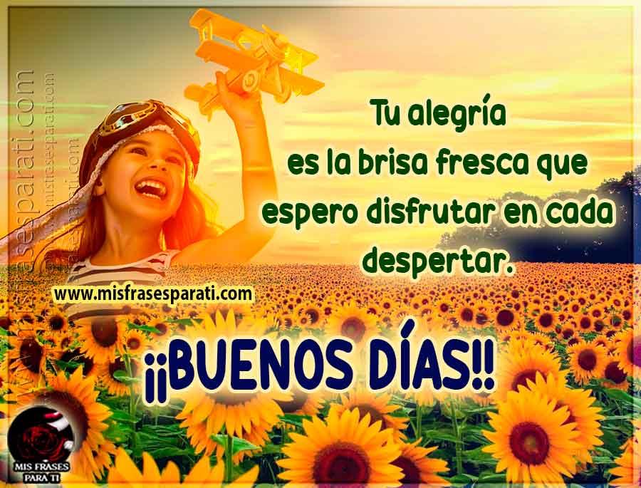 Tu alegría es la brisa fresca que espero disfrutar, buenos días