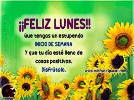 Feliz lunes, que tengas un estupendo inicio de semana y que tu día esté lleno de cosas positivas. Disfrútalo.