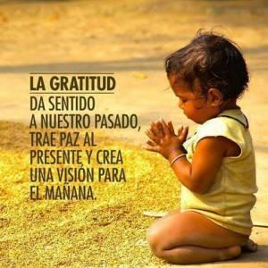 Frases de gratitud,