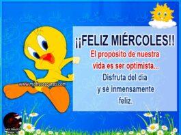 El propósito de nuestra vida es ser optimista, disfruta del día y sé inmensamente feliz.