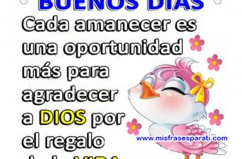 Cada día es una oportunidad para agradecer a Dios, Buenos días