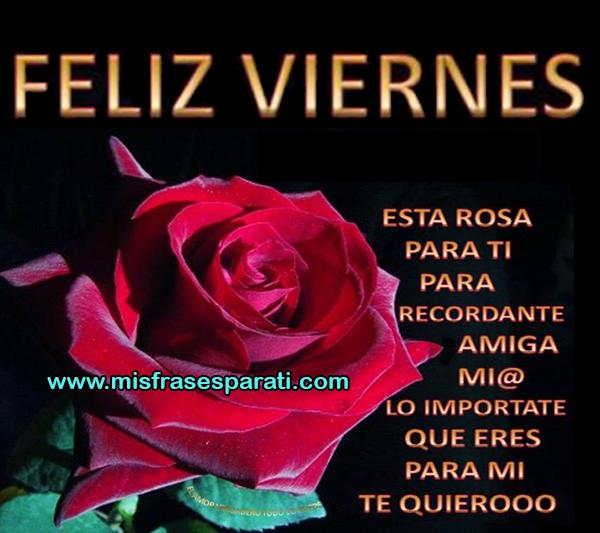 Feliz viernes, esta rosa es para ti, para recordarte amiga mia lo importante que eres para mi, te quiero