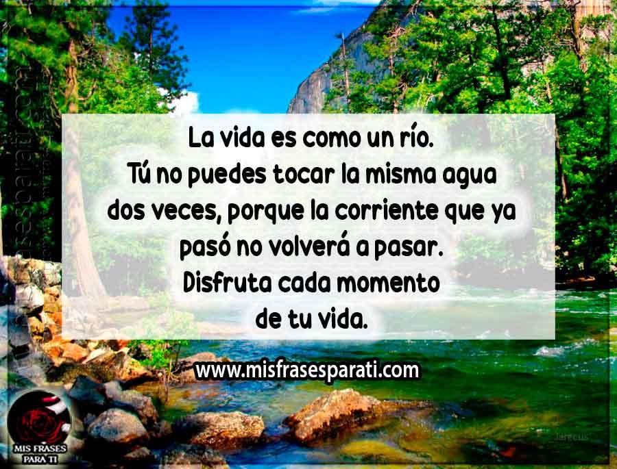 La vida es como un río. Tú no puedes tocar la misma agua dos veces, porque la corriente que ya pasó no volverá a pasar. Disfruta cada momento de tu vida.