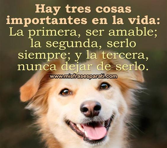 Hay tres cosas importantes en la vida: La primera, ser amable; la segunda, serlo siempre; y la tercera, nunca dejar de serlo.