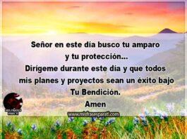 Señor en este día busco tu amparo y tu protección... Dirígeme durante este día y que todos mis planes y proyectos sean un éxito bajo Tu Bendición. Amen