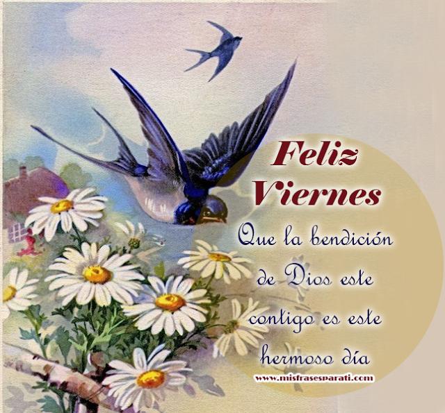 Feliz Viernes  Que la bendición de Dios este  contigo es este hermoso día