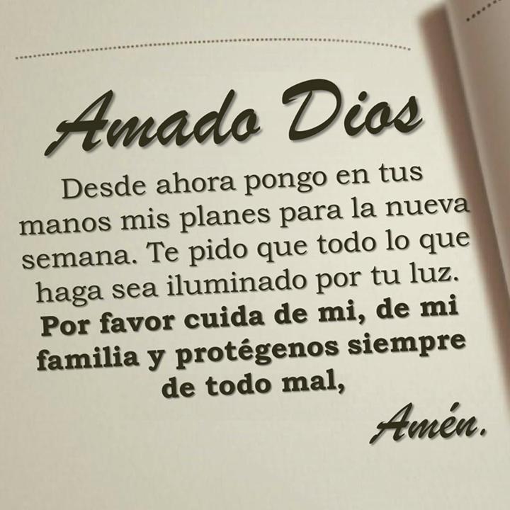 Amado Dios, desde ahora pongo en tus manos mis planes para la nueva semana. Te pido que todo lo que haga sea iluminado por tu luz. Por favor cuida de mi de mi familia y protégenos siempre de todo mal.